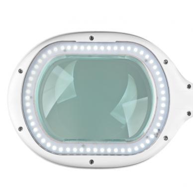 Kosmetologinė LED lempa su lupa 10W (pastatoma / tvirtinama) 9