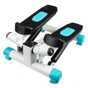 Mini stepper 1006 (1)