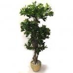 Dirbtinis augalas Lipniasėklis 120cm