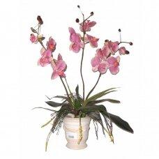 Kunstlill Orhidee 70cm