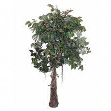 Kunstlik taim Ficus ROD 150cm