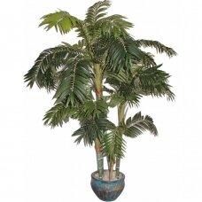 Kunstlik taim Palmipuu ARBORUM 180cm