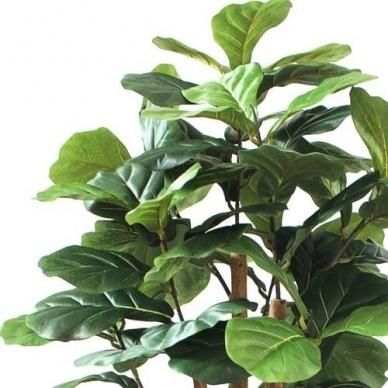 Mākslīgais augs Figa 150cm 3
