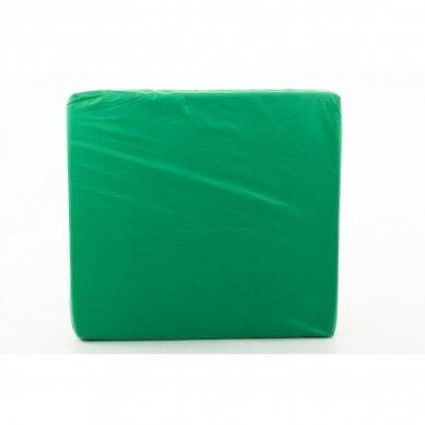 Laipiojimo kopėtėlių saugumo kilimėlis 66x120 cm GREEN 8