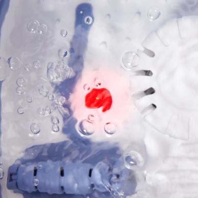 Masāžas kāju vanna Lanaform Heat & Fold Spa 6