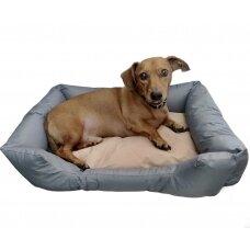 Koera voodi 50 x 40 x 18 cm