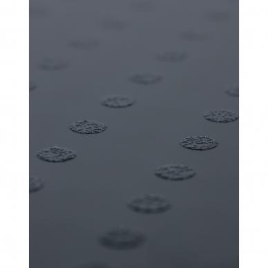 Vannas istabas svari Lanaform Personal Digital Scale 4