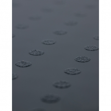 Vannitoakaalud Lanaform Personal Digital Scale 4